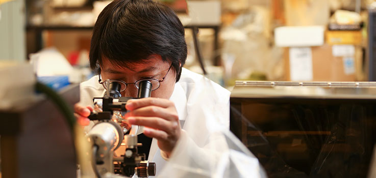 Yandong Zhou, Ph.D., assistant professor in the Department of Cellular & Molecular Physiology at Penn State College of Medicine, is pictured looking into a microscopy in a department laboratory in July 2016. Zhou is wearing a lab coat and glasses and is framed by other laboratory equipment.