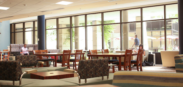 The interior of the Harrell Health Sciences Library is shown, with students empty tables in front of students seated in armchairs in front of sunlit windows.